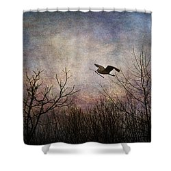 Last Delivery Of The Day Shower Curtain