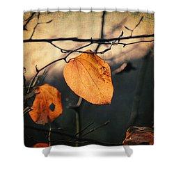 Last Leaves Shower Curtain by Taylan Apukovska