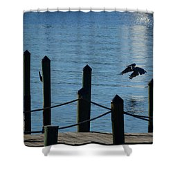 Last Light Flight Shower Curtain