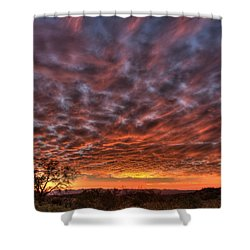 Last Light In Oracle Shower Curtain