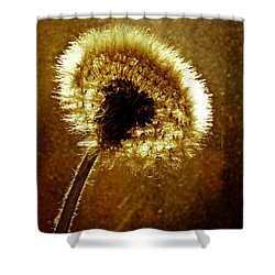 Last Light Of Day Shower Curtain by Bob Orsillo