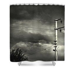 Last Morning Shower Curtain by Taylan Apukovska