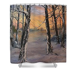 Last Of The Sun Shower Curtain by Jean Walker