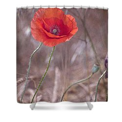 Last Poppy Shower Curtain by Guido Montanes Castillo