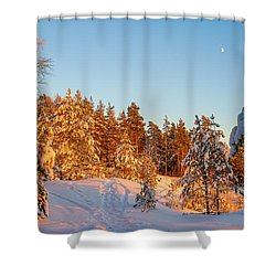 Last Rays Of Light In The Winter Forest Shower Curtain