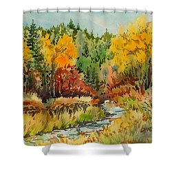 Latah Creek Fall Colors Shower Curtain