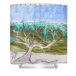 Late Winter Frost Shower Curtain
