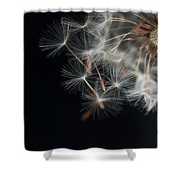 Launch Bay Open Shower Curtain
