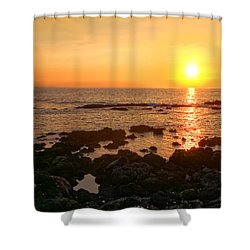 Lava Rock Beach Shower Curtain