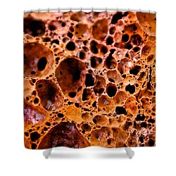 Lava Rock Shower Curtain
