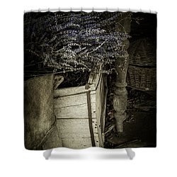 Lavandula Shower Curtain by Amy Weiss