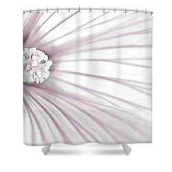 Lavatera Flower Stamen Macro  Shower Curtain by Sandra Foster