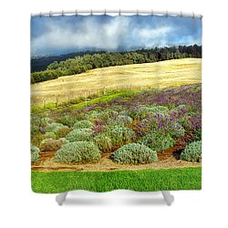 Lavendar 5 Shower Curtain