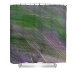 Lavendar Fields Shower Curtain