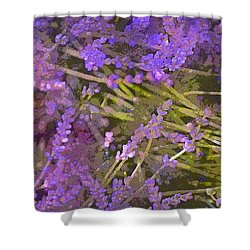 Lavender 6 Shower Curtain