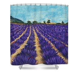 Lavender Afternoon Shower Curtain by Anastasiya Malakhova