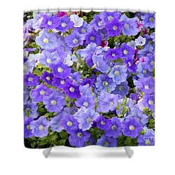 Lavender And Purple Shower Curtain by Mariarosa Rockefeller