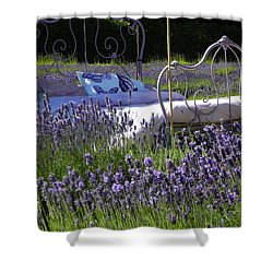 Shower Curtain featuring the photograph Lavender Dreams by Cheryl Hoyle