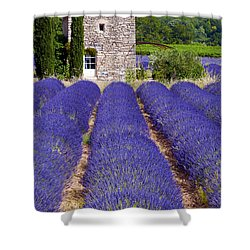Lavender Farm Shower Curtain by Bob Phillips