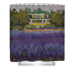 Lavender Farm On Vashon Island Shower Curtain