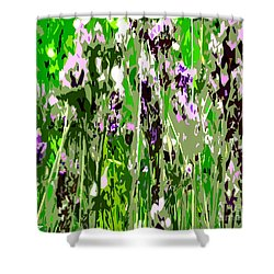 Lavender In Summer Shower Curtain by Patrick J Murphy