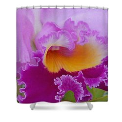Shower Curtain featuring the photograph Lavender Orchid by Aimee L Maher Photography and Art Visit ALMGallerydotcom