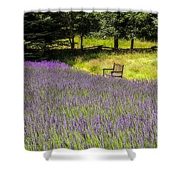 Lavender Rest Shower Curtain by Kathy Bassett