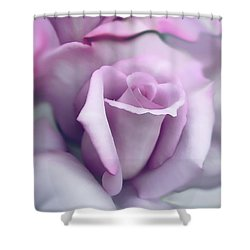 Lavender Rose Flower Portrait Shower Curtain