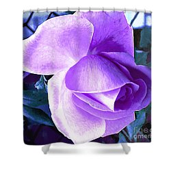 Shower Curtain featuring the photograph Lavender Rose by Judy Palkimas