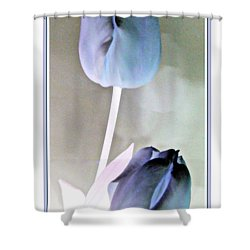 Lavender Tulips Shower Curtain by Danielle  Parent