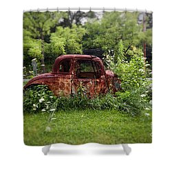 Lawn Ornament Shower Curtain