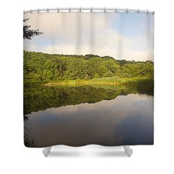 Lazy Afternoon Shower Curtain by Michael Porchik