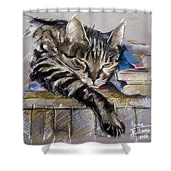 Lazy Cat Portrait - Drawing Shower Curtain