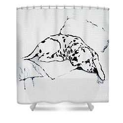 Lazy Day Shower Curtain by Jacki McGovern