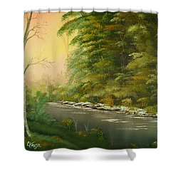 Shower Curtain featuring the painting Lazy River by Chris Fraser