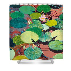 Lazy Summer Afternoon Shower Curtain by Allan P Friedlander