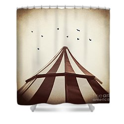 Le Carnivale Shower Curtain by Trish Mistric