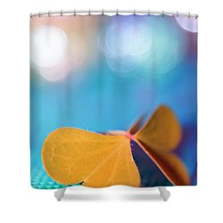 Le Papillon - The Butterfly - 21 Shower Curtain by Variance Collections