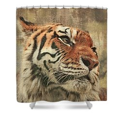 Le Reveur Shower Curtain by Aimelle