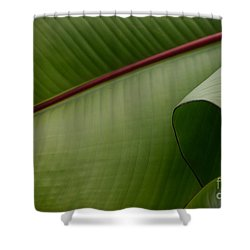 Leaf Abstract Shower Curtain by Jane Ford