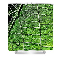Leaf Abstract - Macro Photography Shower Curtain by Marianna Mills