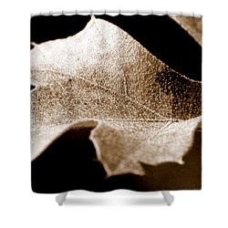 Leaf Collage 1 Shower Curtain