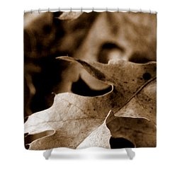 Shower Curtain featuring the photograph Leaf Collage 4 by Lauren Radke