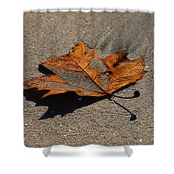 Shower Curtain featuring the photograph Leaf Composed by Joe Schofield