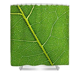 Leaf Detail Shower Curtain by Carsten Reisinger