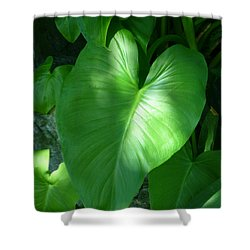 Leaf Heart Shower Curtain