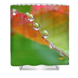 Leaf Pearls Shower Curtain by Patti Whitten