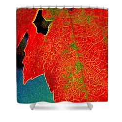 Shower Curtain featuring the photograph Leaf Pop by Kathy Bassett