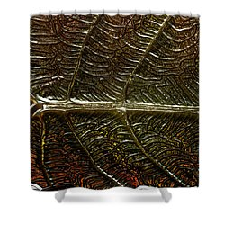 Leafage Shower Curtain by Richard Thomas