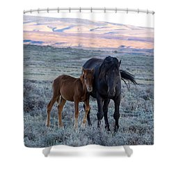 Lean On Me... Ruby And Coal Shower Curtain